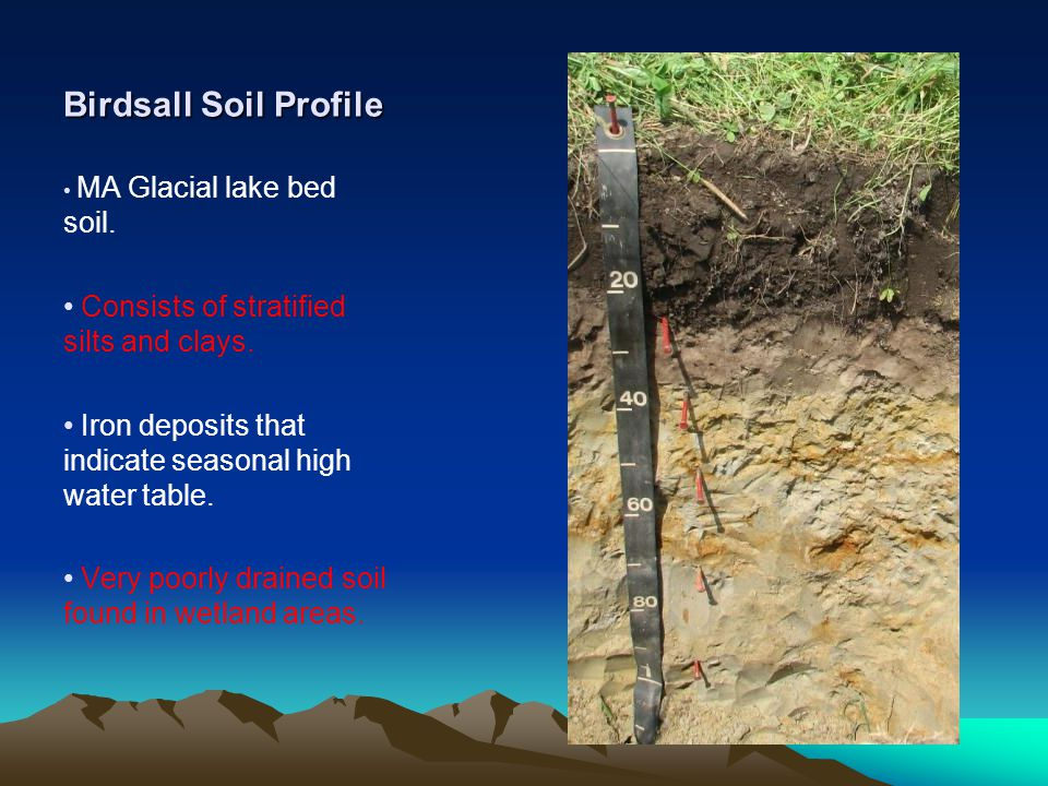 Birdsall Soil Profile MA Glacial lake bed soil.Consists of stratified silts and clays.