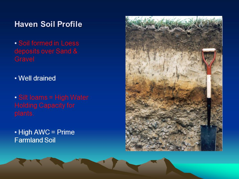 Haven Soil Profile Soil formed in Loess deposits over Sand & Gravel Well drained Silt loams = High Water Holding Capacity for plants.