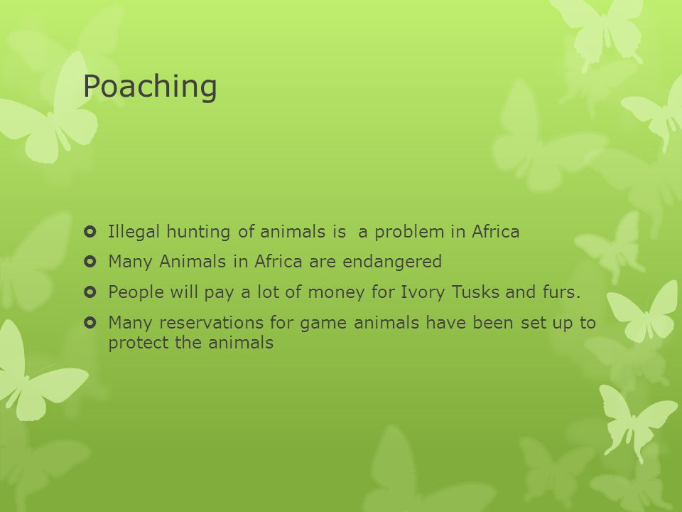 Poaching  Illegal hunting of animals is a problem in Africa  Many Animals in Africa are endangered  People will pay a lot of money for Ivory Tusks
