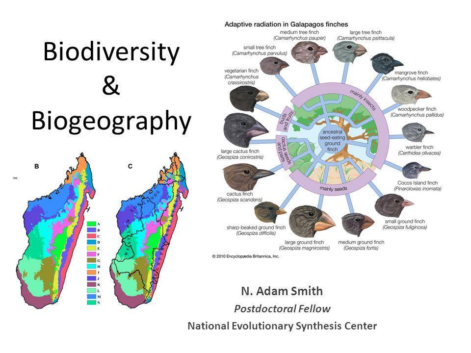 Biodiversity & Biogeography N.