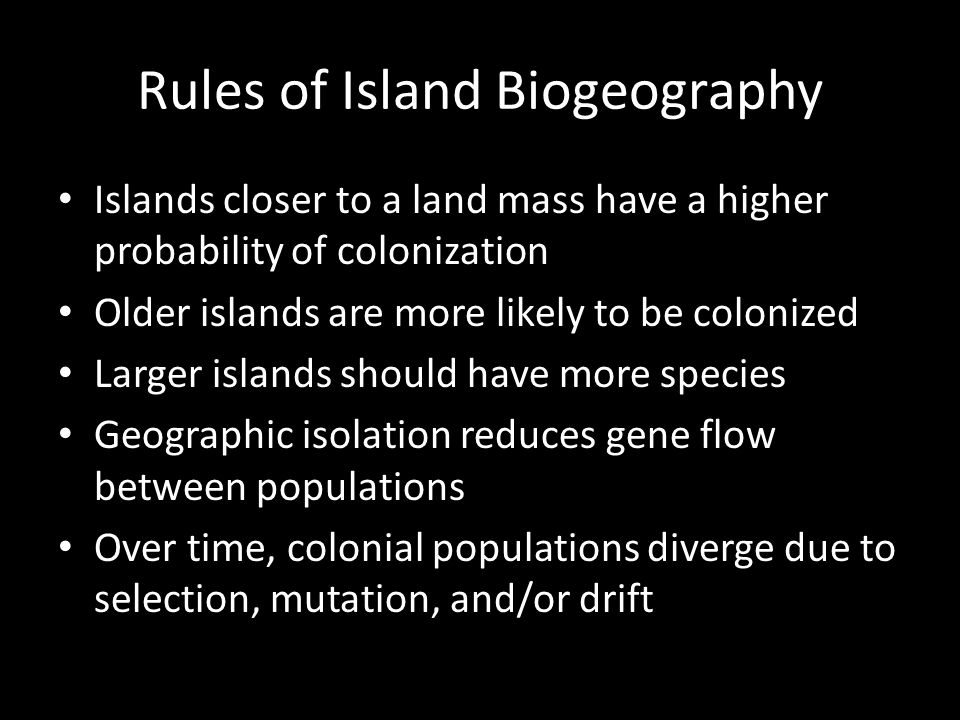 Rules of Island Biogeography Islands closer to a land mass have a higher probability of colonization Older islands are more likely to be colonized Larger islands should have more species Geographic isolation reduces gene flow between populations Over time, colonial populations diverge due to selection, mutation, and/or drift