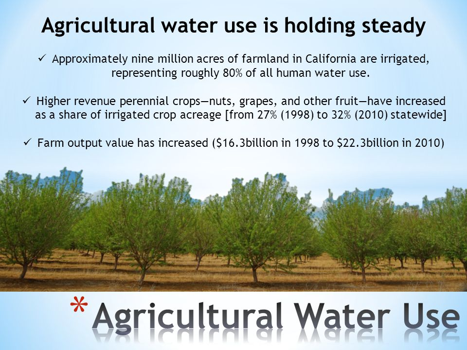 Agricultural water use is holding steady Approximately nine million acres of farmland in California are irrigated, representing roughly 80% of all human water use.