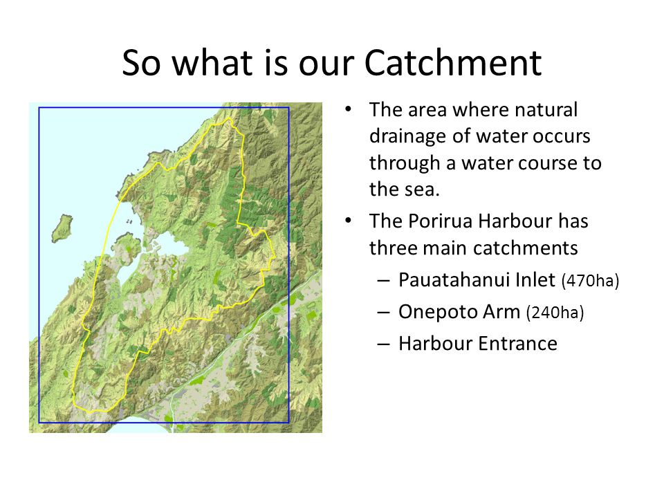 So what is our Catchment The area where natural drainage of water occurs through a water course to the sea.