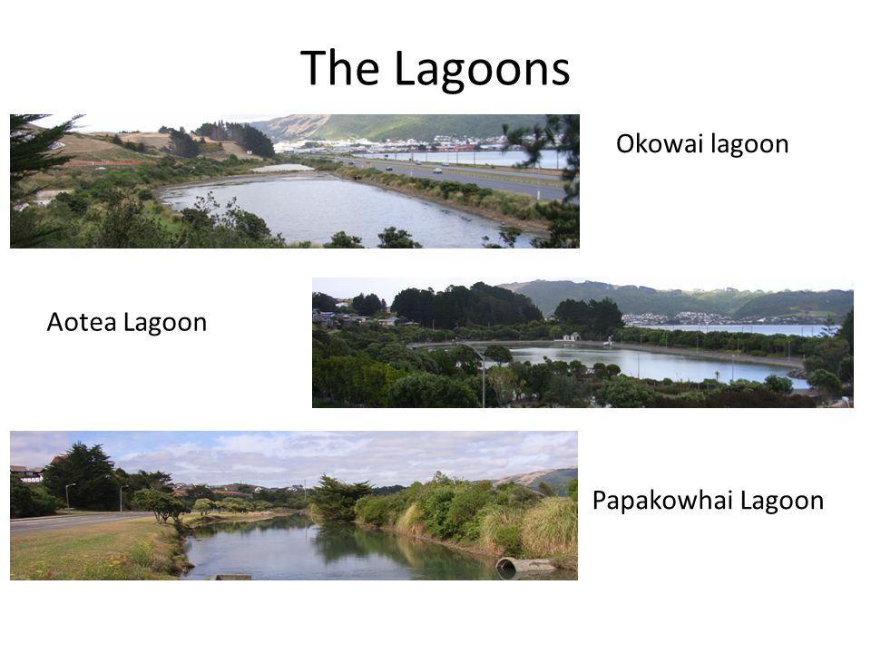 The Lagoons Okowai lagoon Aotea Lagoon Papakowhai Lagoon