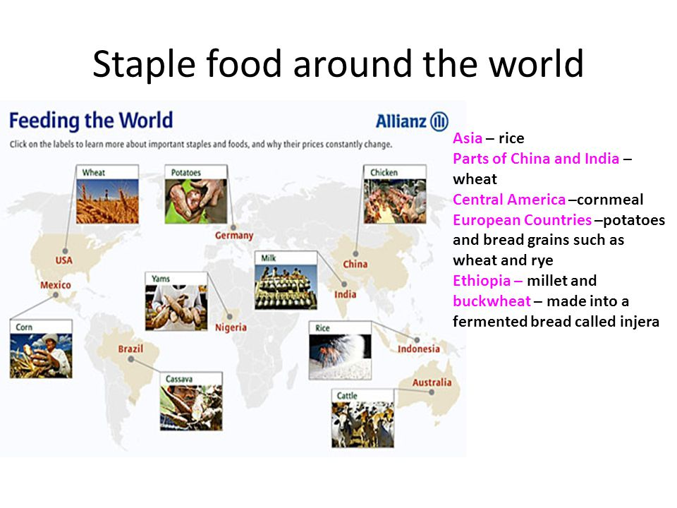 Staple food around the world Asia – rice Parts of China and India – wheat Central America –cornmeal European Countries –potatoes and bread grains such