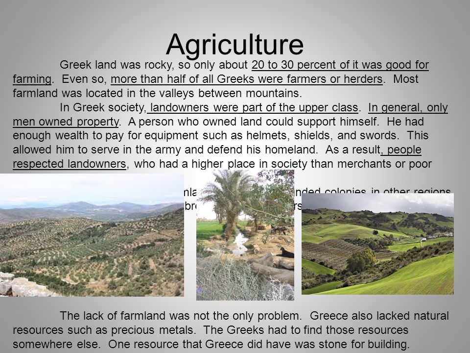Agriculture Greek land was rocky, so only about 20 to 30 percent of it was good for farming.