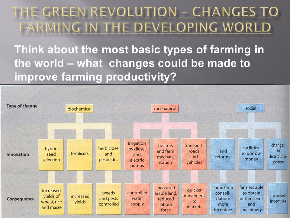 Think about the most basic types of farming in the world – what changes could be made to improve farming productivity?