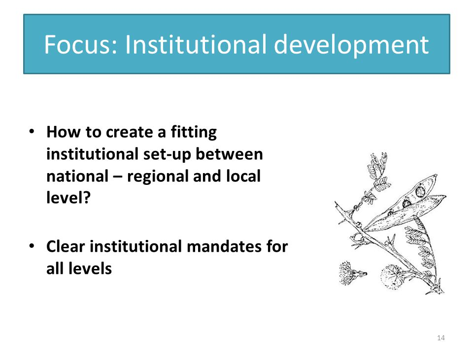 Focus: Institutional development How to create a fitting institutional set-up between national – regional and local level.