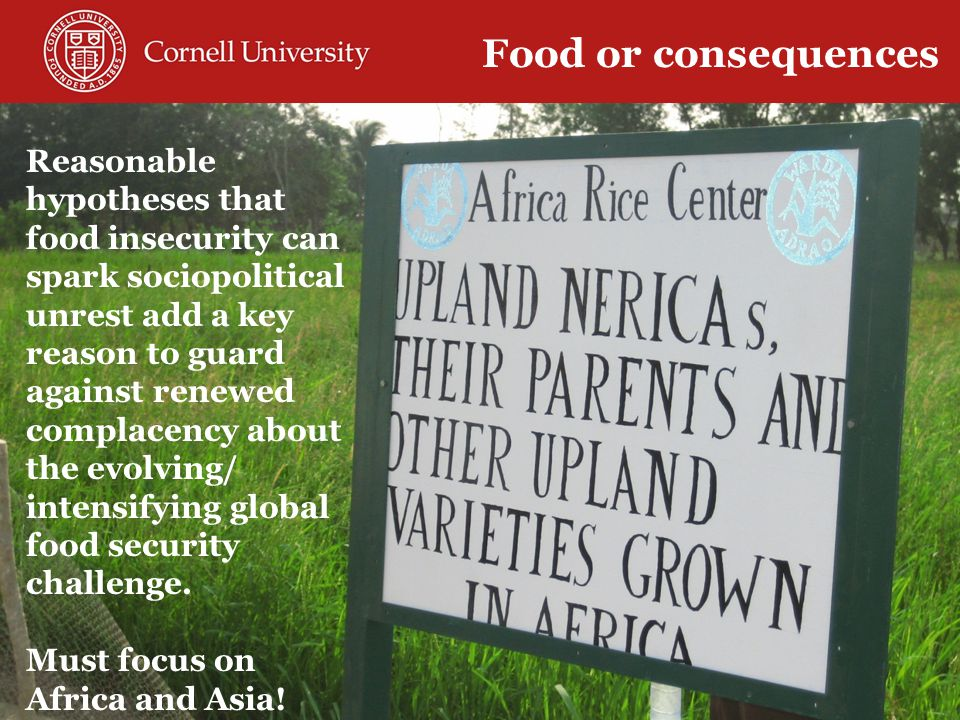 Reasonable hypotheses that food insecurity can spark sociopolitical unrest add a key reason to guard against renewed complacency about the evolving/ intensifying global food security challenge.
