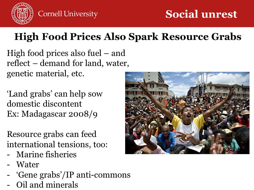 Land Acquisitions - Higher food prices and growing land scarcity (esp.