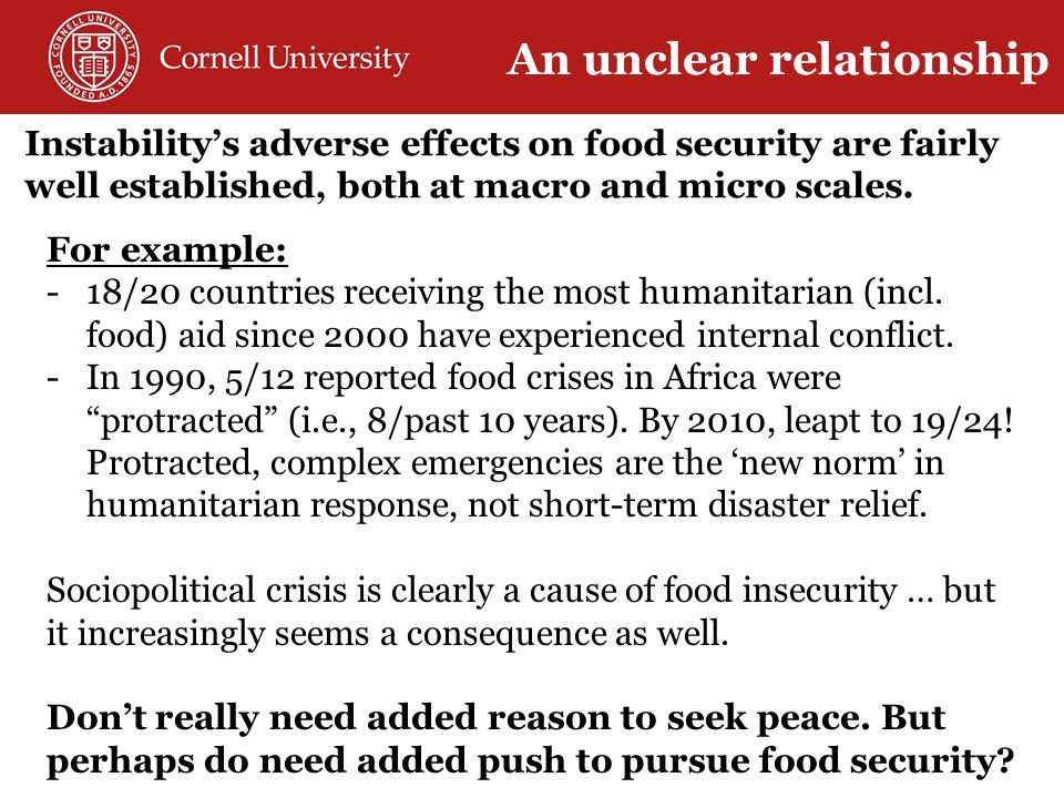 Instability's adverse effects on food security are fairly well established, both at macro and micro scales.