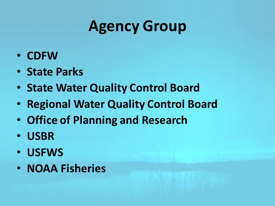 Agency Group CDFW State Parks State Water Quality Control Board Regional Water Quality Control Board Office of Planning and Research USBR USFWS NOAA Fisheries