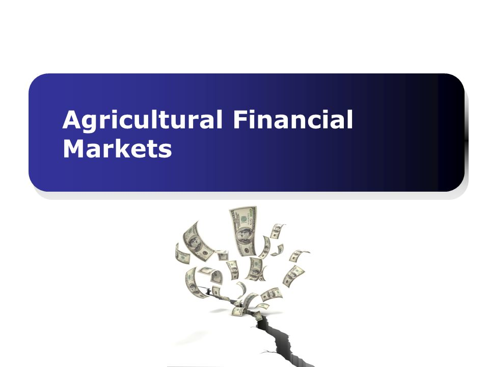 Agricultural Financial Markets