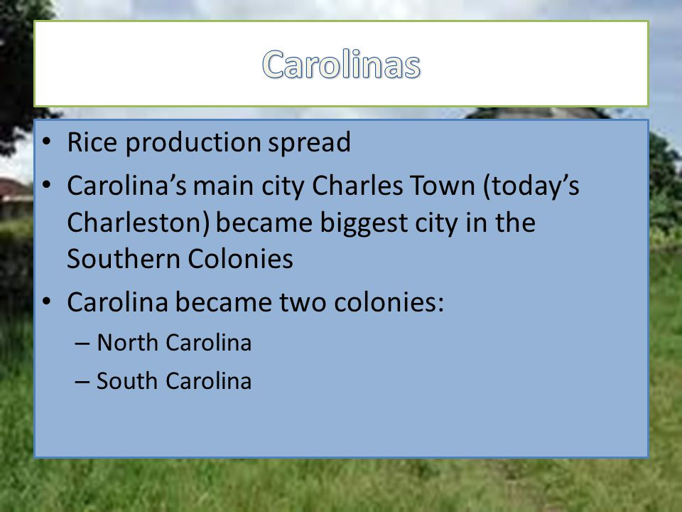 Rice production spread Carolina's main city Charles Town (today's Charleston) became biggest city in the Southern Colonies Carolina became two colonies: – North Carolina – South Carolina