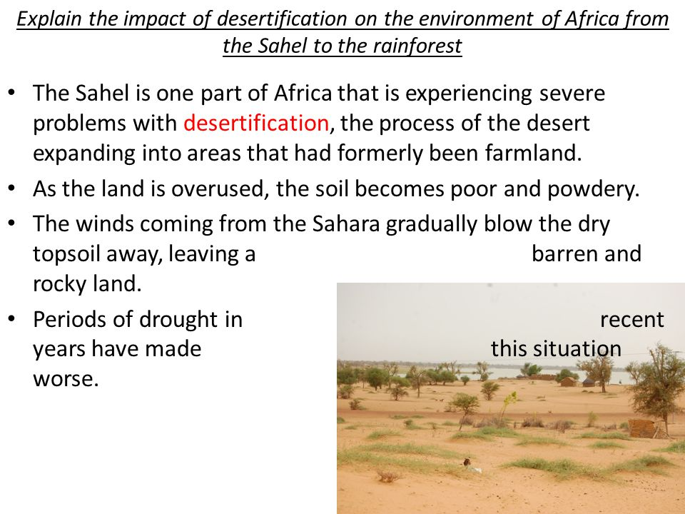 Explain the impact of desertification on the environment of Africa from the Sahel to the rainforest The Sahel is one part of Africa that is experienci
