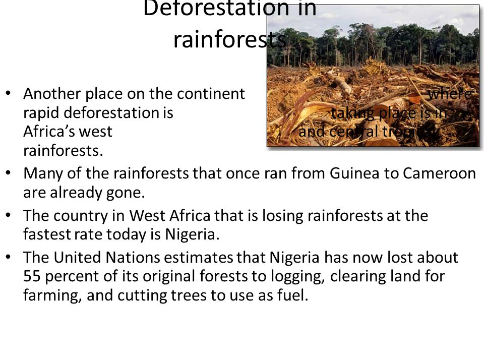 Deforestation in rainforests Another place on the continent where rapid deforestation is taking place is in Africa's west and central tropical rainfor