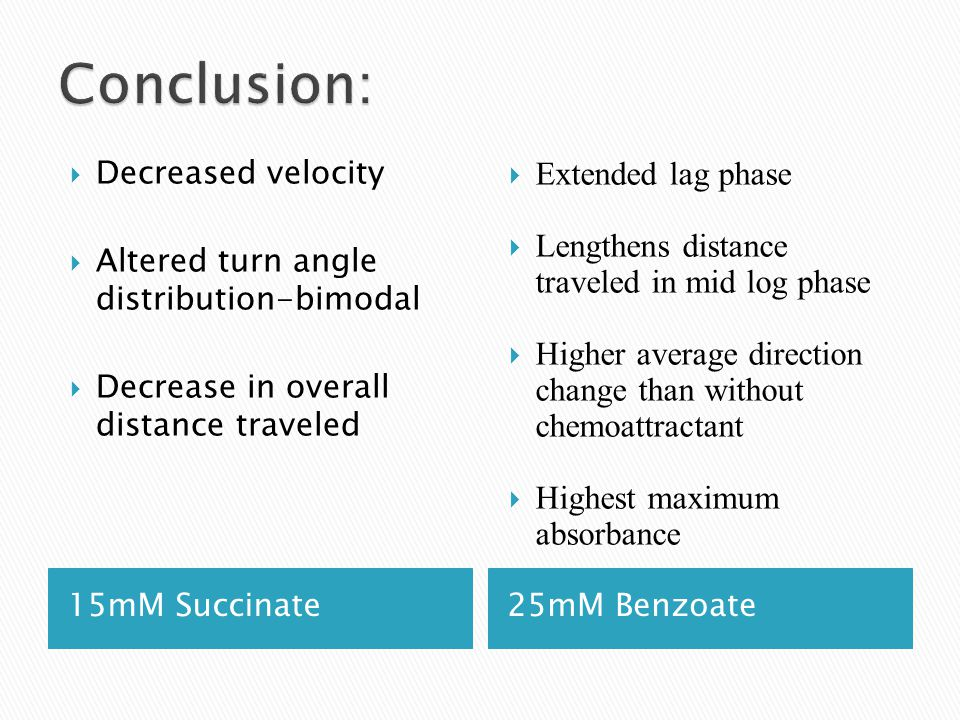15mM Succinate25mM Benzoate  Decreased velocity  Altered turn angle distribution-bimodal  Decrease in overall distance traveled  Extended lag phas