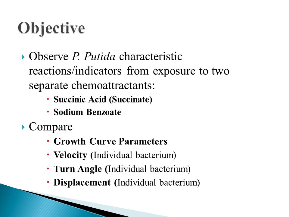  Observe P. Putida characteristic reactions/indicators from exposure to two separate chemoattractants:  Succinic Acid (Succinate)  Sodium Benzoate