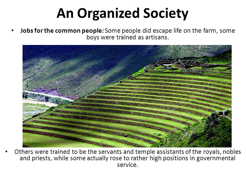 An Organized Society Jobs for the common people: Some people did escape life on the farm, some boys were trained as artisans. Others were trained to b