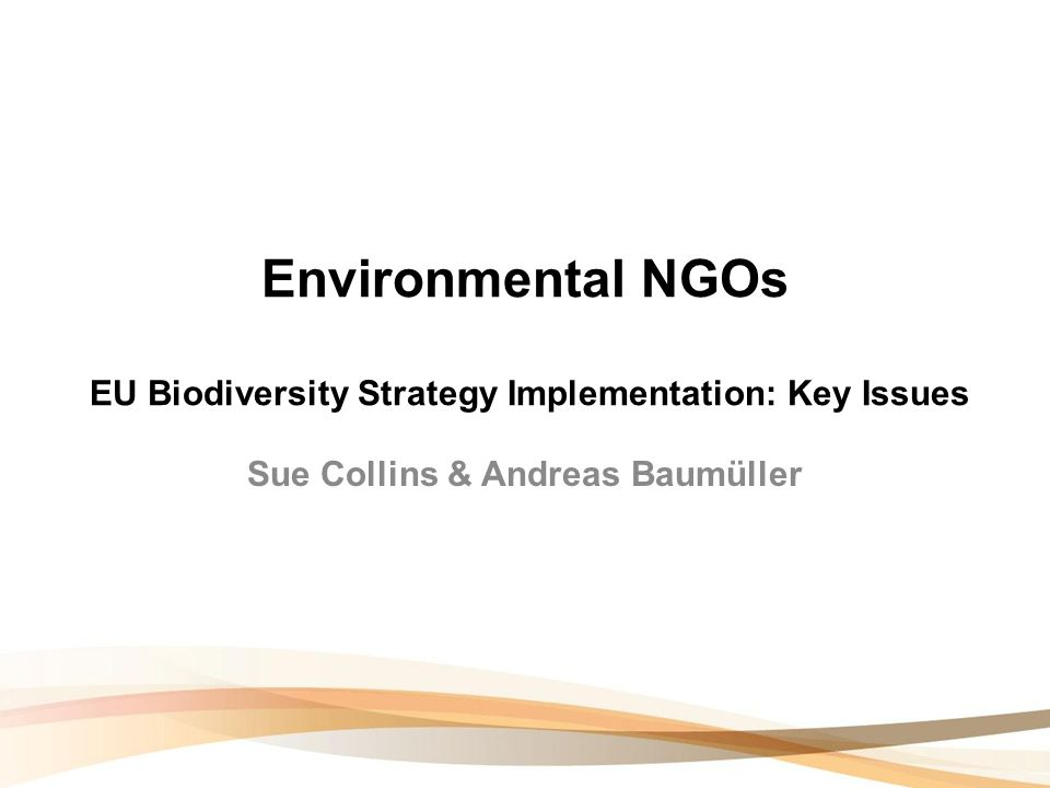Environmental NGOs EU Biodiversity Strategy Implementation: Key Issues Sue Collins & Andreas Baumüller