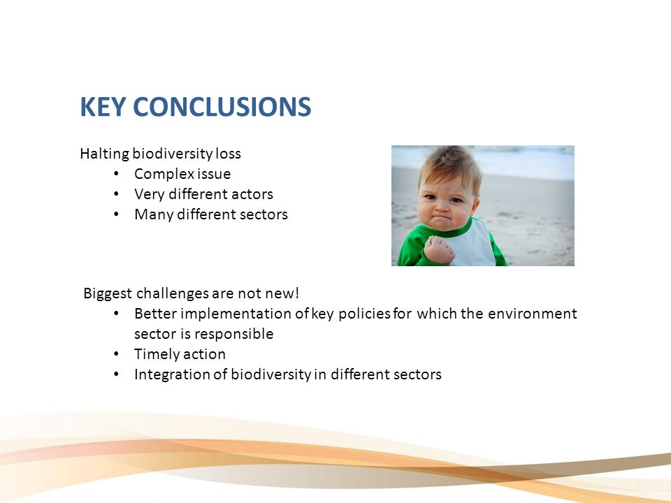 KEY CONCLUSIONS Halting biodiversity loss Complex issue Very different actors Many different sectors Biggest challenges are not new.