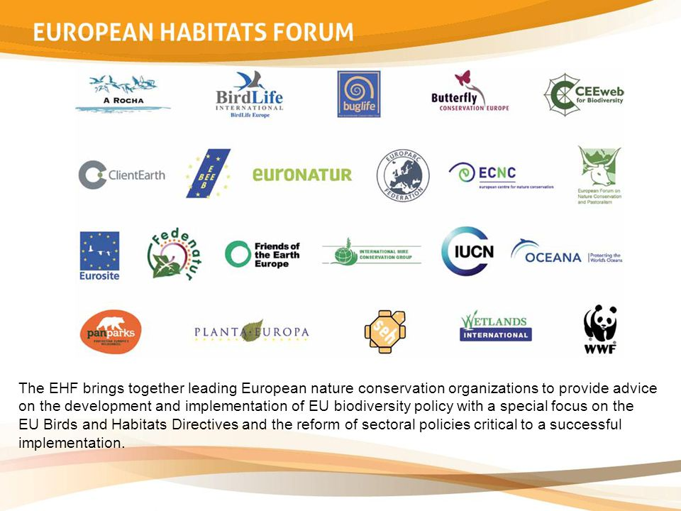 The EHF brings together leading European nature conservation organizations to provide advice on the development and implementation of EU biodiversity policy with a special focus on the EU Birds and Habitats Directives and the reform of sectoral policies critical to a successful implementation.