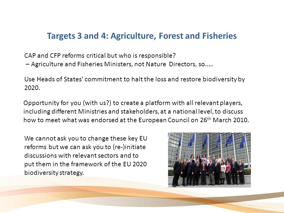 Targets 3 and 4: Agriculture, Forest and Fisheries CAP and CFP reforms critical but who is responsible.