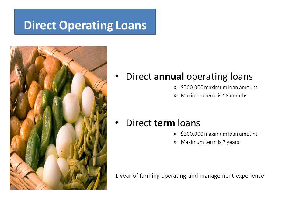 Direct Operating Loans Direct annual operating loans » $300,000 maximum loan amount » Maximum term is 18 months Direct term loans » $300,000 maximum l