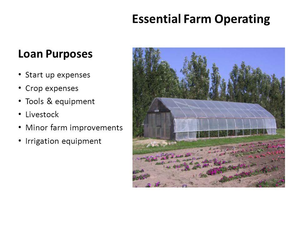Loan Purposes Essential Farm Operating Start up expenses Crop expenses Tools & equipment Livestock Minor farm improvements Irrigation equipment