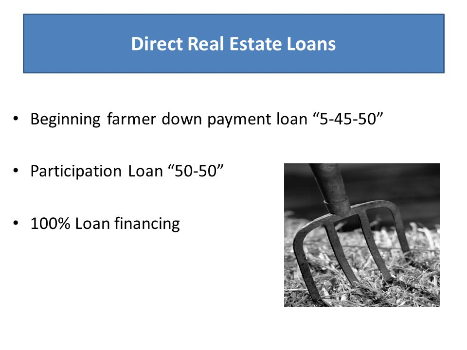 "Direct Real Estate Loans Beginning farmer down payment loan ""5-45-50"" Participation Loan ""50-50"" 100% Loan financing"