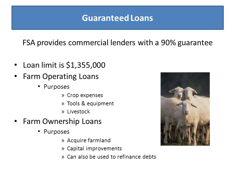Guaranteed Loans FSA provides commercial lenders with a 90% guarantee Loan limit is $1,355,000 Farm Operating Loans Purposes » Crop expenses » Tools &