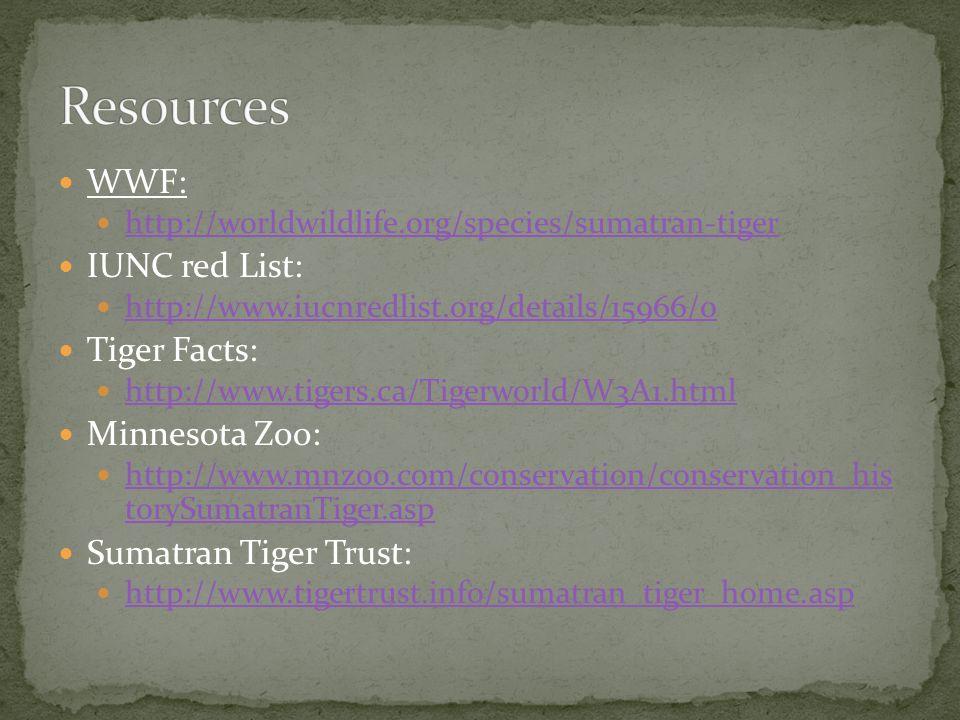 WWF: http://worldwildlife.org/species/sumatran-tiger IUNC red List: http://www.iucnredlist.org/details/15966/0 Tiger Facts: http://www.tigers.ca/Tigerworld/W3A1.html Minnesota Zoo: http://www.mnzoo.com/conservation/conservation_his torySumatranTiger.asp http://www.mnzoo.com/conservation/conservation_his torySumatranTiger.asp Sumatran Tiger Trust: http://www.tigertrust.info/sumatran_tiger_home.asp