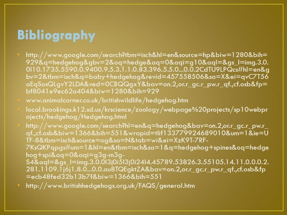 http://www.google.com/search?tbm=isch&hl=en&source=hp&biw=1280&bih= 929&q=hedgehog&gbv=2&oq=hedge&aq=0&aqi=g10&aql=&gs_l=img.3.0.