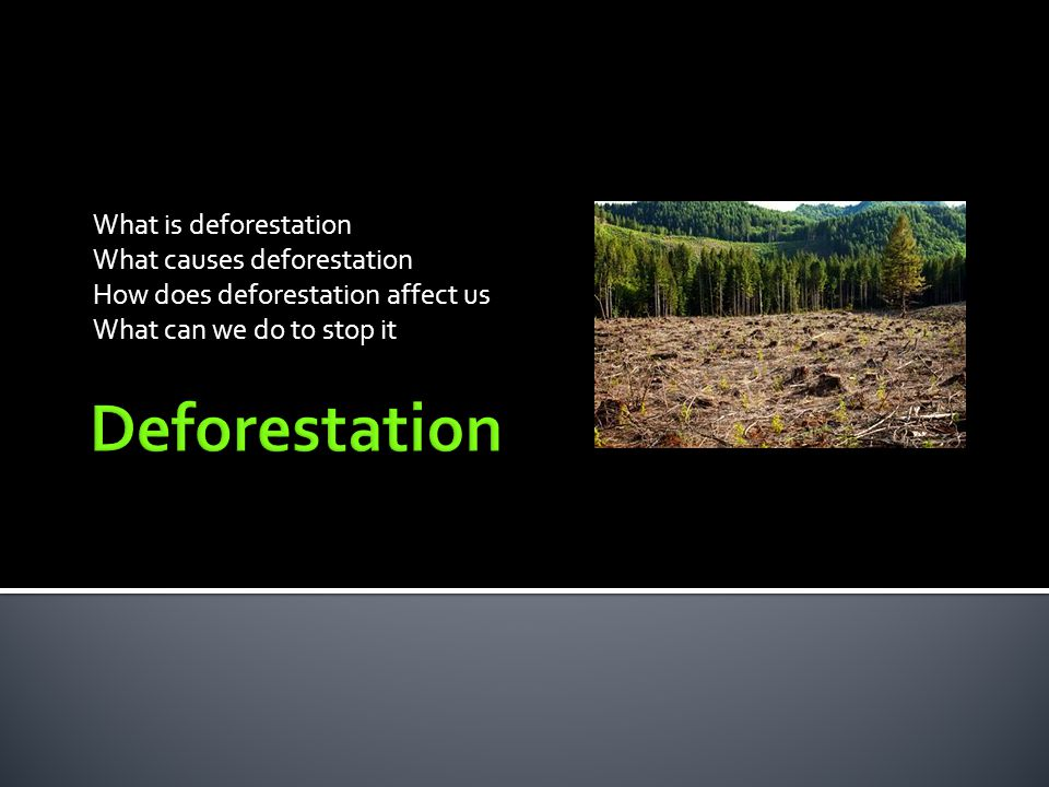De + Forest = Deforestation Deforestation refers to the cutting, clearing, and removal of rainforest or related ecosystems into pasture, cropland, or plantations (Kricher, 1997).