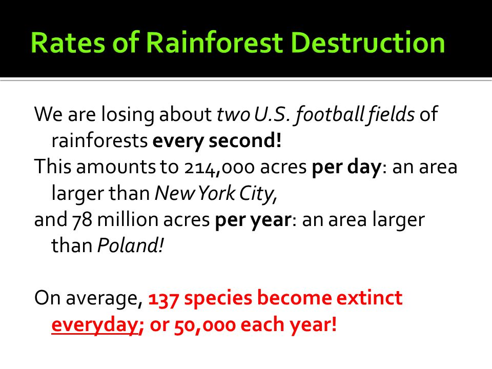 We are losing about two U.S. football fields of rainforests every second! This amounts to 214,000 acres per day: an area larger than New York City, an
