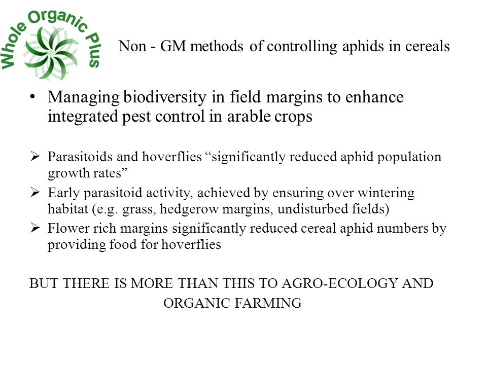 Non - GM methods of controlling aphids in cereals Managing biodiversity in field margins to enhance integrated pest control in arable crops  Parasitoids and hoverflies significantly reduced aphid population growth rates  Early parasitoid activity, achieved by ensuring over wintering habitat (e.g.
