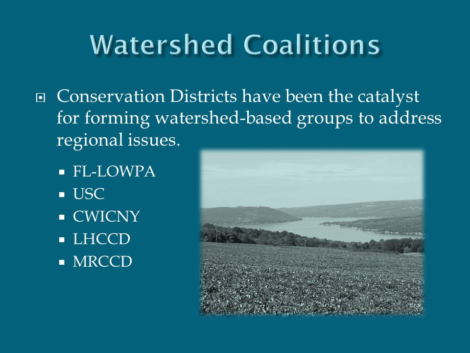  Conservation Districts have been the catalyst for forming watershed-based groups to address regional issues.  FL-LOWPA  USC  CWICNY  LHCCD  MRC