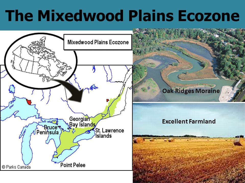 The Mixedwood Plains Ecozone Oak Ridges Moraine Excellent Farmland