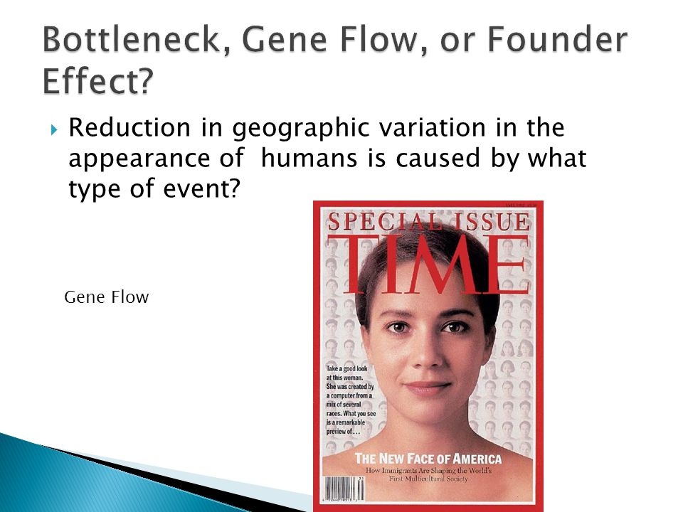  Reduction in geographic variation in the appearance of humans is caused by what type of event? Gene Flow