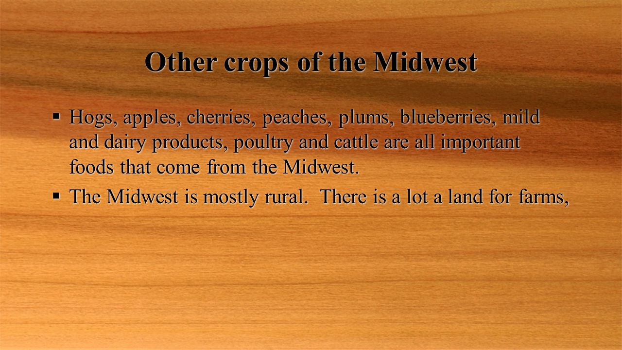 Other crops of the Midwest  Hogs, apples, cherries, peaches, plums, blueberries, mild and dairy products, poultry and cattle are all important foods