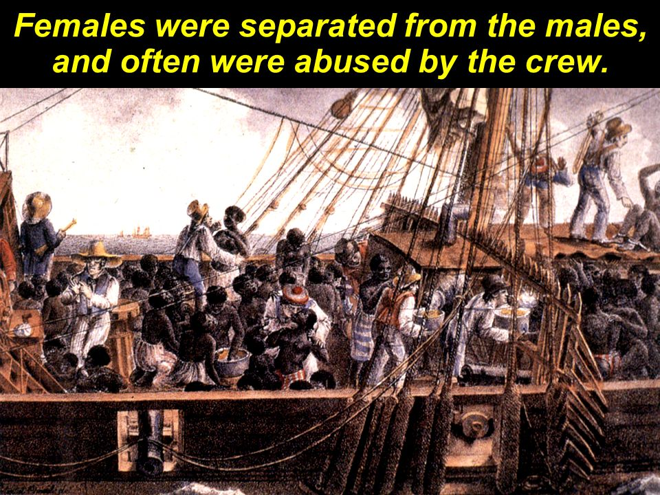 As many as half the slaves on any ship died during this cruel 'Middle Passage.'