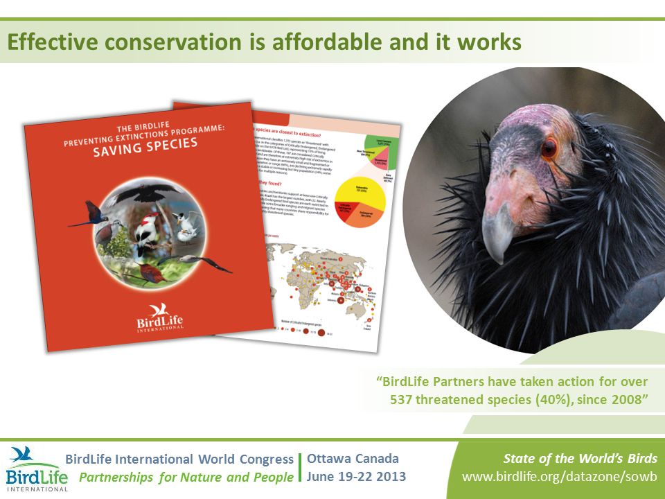 Effective conservation is affordable and it works BirdLife Partners have taken action for over 537 threatened species (40%), since 2008 State of the World's Birds www.birdlife.org/datazone/sowb BirdLife International World Congress Partnerships for Nature and People Ottawa Canada June 19-22 2013