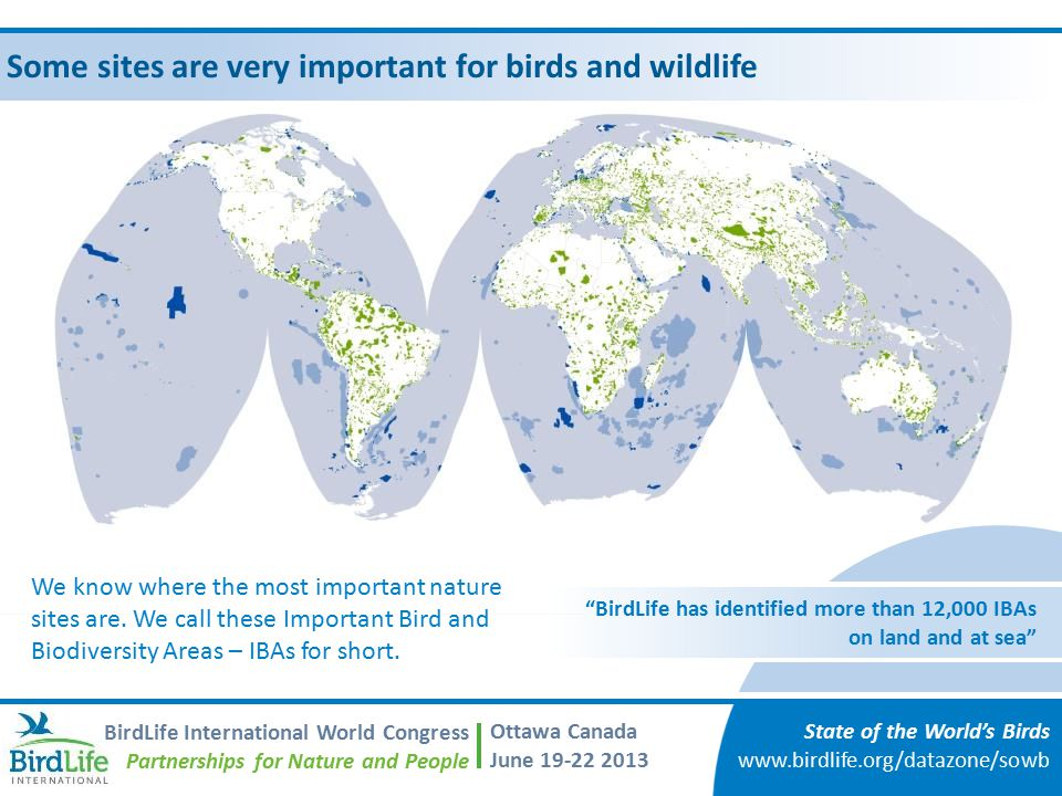 Some sites are very important for birds and wildlife State of the World's Birds www.birdlife.org/datazone/sowb BirdLife International World Congress Partnerships for Nature and People Ottawa Canada June 19-22 2013 BirdLife has identified more than 12,000 IBAs on land and at sea We know where the most important nature sites are.