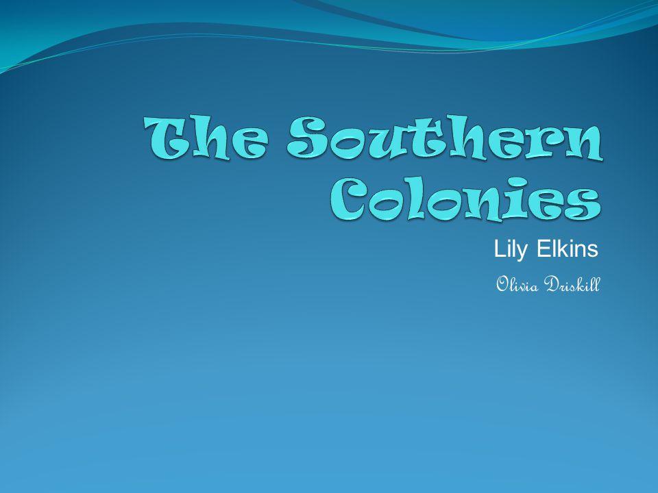 Lily Elkins Olivia Driskill