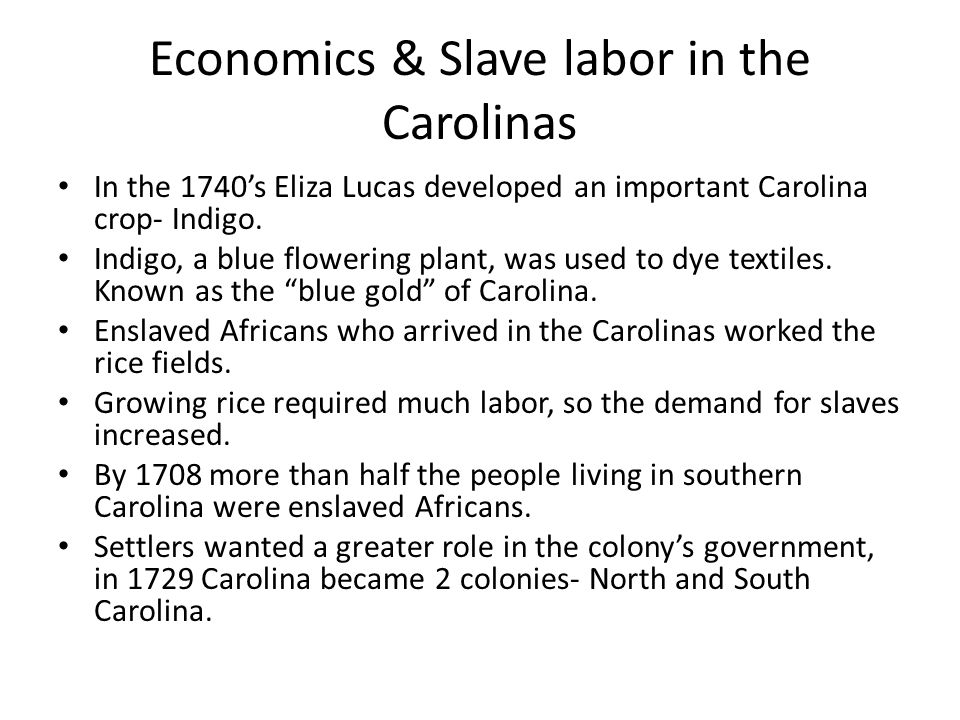 Economics & Slave labor in the Carolinas In the 1740's Eliza Lucas developed an important Carolina crop- Indigo.