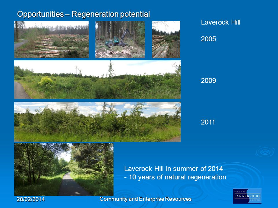 Opportunities – Regeneration potential 28/02/2014 Community and Enterprise Resources Laverock Hill 2005 2009 2011 Laverock Hill in summer of 2014 - 10 years of natural regeneration