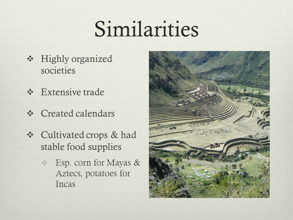 Similarities  Highly organized societies  Extensive trade  Created calendars  Cultivated crops & had stable food supplies  Esp.