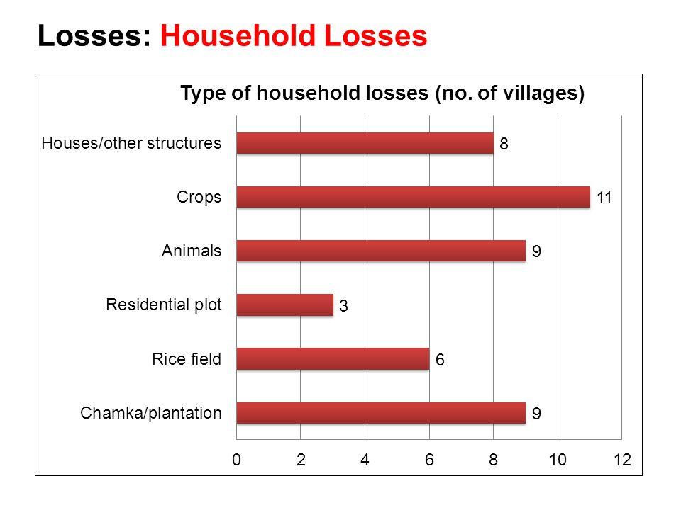 Losses: Household Losses