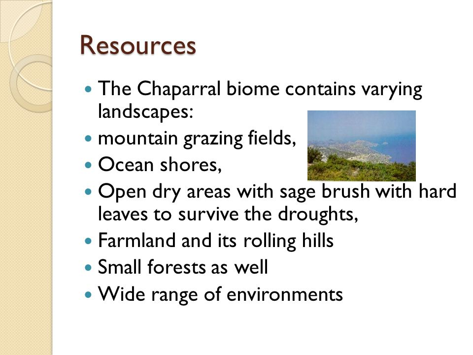 Resources The Chaparral biome contains varying landscapes: mountain grazing fields, Ocean shores, Open dry areas with sage brush with hard leaves to survive the droughts, Farmland and its rolling hills Small forests as well Wide range of environments