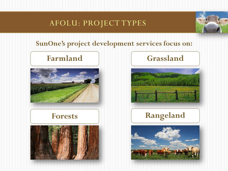 SunOne's project development services focus on: Farmland Rangeland Forests Grassland AFOLU: PROJECT TYPES